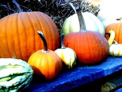 October's Pumpkins